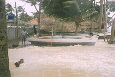 The monsoon's effects on an unprotected Minicoy beach resulting from a low pressure system that originated near Amini Island in the Amindivi group. May 2004
